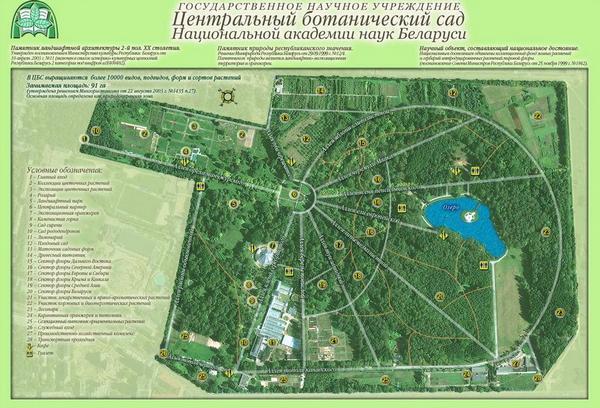 Современная планировка Центрального ботанического сада