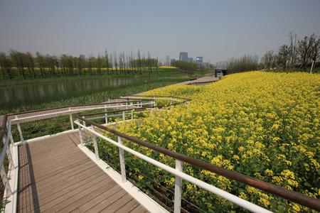 Houtan Park_8