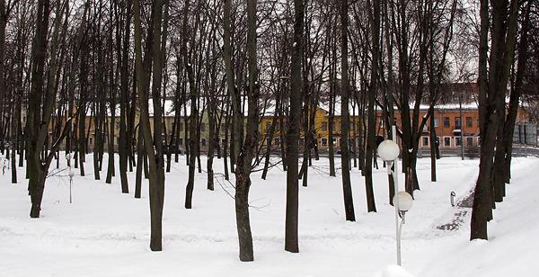 Домикам за деревьями парка запретил расти Цанава
