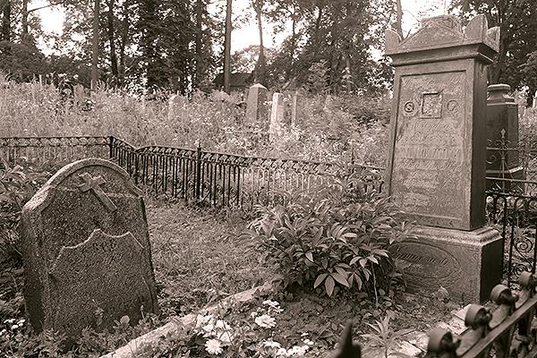 Где-то здесь, на центральной аллее, располагались могилы Кобылинских